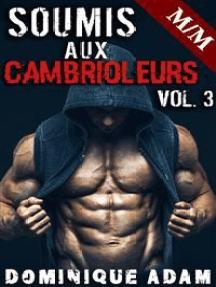 Soumis Aux Cambrioleurs Vol. 3