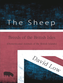 The Sheep - Breeds of the British Isles (Domesticated Animals of the British Islands)