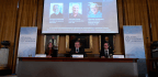 Nobel Prize In Chemistry Honors Views Of Human Cells Working At The Atomic Level