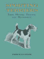 Sporting Terriers - Their History, Training and Management