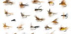 The Philosophy of Fly-Fishing