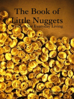 The Book of Little Nuggets