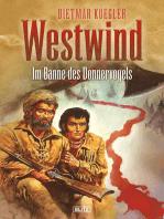 Dietmar Kueglers Westwind 04