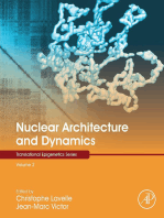 Nuclear Architecture and Dynamics