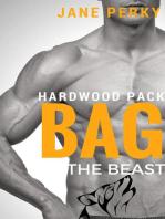 Bag the Beast, A Gay Romance