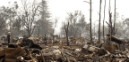 Insured Losses Top $1 Billion in Northern California Fires