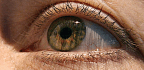 How Does Gene Therapy for Blindness Work?