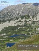 Schattenspiel der Berge