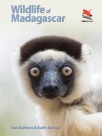 Wildlife of Madagascar