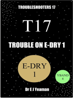 Trouble on E-Dry 1 (Troubleshooters 17)