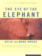 The Eye of the Elephant