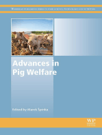 Advances in Pig Welfare