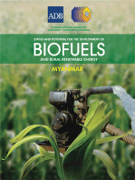 Status and Potential for the Development of Biofuels and Rural Renewable Energy