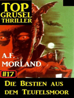 Top Grusel Thriller #17