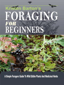 Foraging For Beginners: A Simple Foragers Guide To Wild Edible Plants And Medicinal Herbs