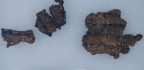 Trade in Dead Sea Scrolls Awash With Suspected Forgeries, Experts Warn
