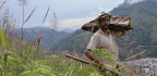 In Post-Conflict Colombia, Land-Rights and Funding for Peacebuilding Face Off