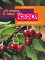 Guía completa del cultivo de las cerezas. Variedades y propiedades, recolección y conservación, tamaño, injertos - incluye recetas de cocina