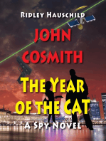 John Cosmith - The Year of the CAT