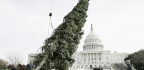 Republicans Are Fighting Over Christmas