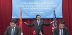 The Fall of Chinese Internet Czar Lu Wei
