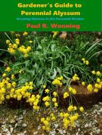 Gardener's Guide to Perennial Alyssum