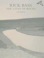 The Lives of Rocks