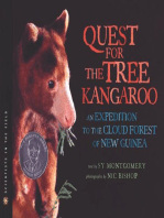 The Quest for the Tree Kangaroo