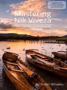 Mastering Nik Viveza
