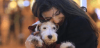 Why 'Pawternity Leave' Is Good for People and Pets | Paul Fleckney