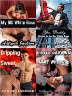 Interracial Erotica Bundle