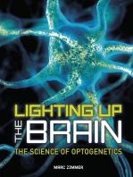 Lighting Up the Brain