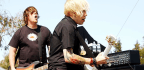 Pop-Punk Bassist Accused Of $27 Million Fraud Scheme