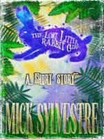 The Lost Little Rabbit Girl