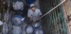 Rights Abuses Still 'Widespread' In Thailand's Fishing Industry, Report Says