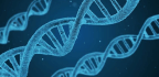 'Incredible Genes' Can Only Do so Much to Counteract an Unhealthy Lifestyle