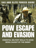 POW Escape And Evasion