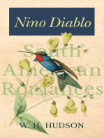 Nino Diablo (South American Romances)