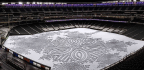 Embracing Winter's Chill Through Snow Artistry