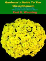 Gardener's Guide to the Perennial Chrysanthemum
