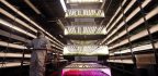 The Promise of Indoor, Hurricane-Proof 'Vertical' Farms