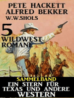 Sammelband 5 Wildwest-Romane