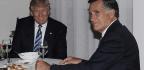 Romney Postpones Senate Announcement After Florida School Shooting