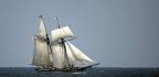 Sunken Slave Ship Discovered Off Alabama Coast