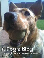 A Dog's Blog II