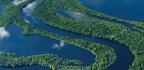 AMAZON Luxe