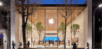 IPhone, IPad Sales Surprisingly Flat, But Apple Still Soars To Record Revenue In First Quarter