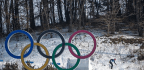 More Ways Than Ever To Watch The Olympics, But Fewer Americans Are Watching