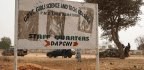 110 Girls Missing In Latest Suspected Boko Haram Attack, Says Nigerian Government