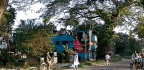 Can a Court Order and Protests Save Centenary Trees on Bangladesh's Jessore Road?